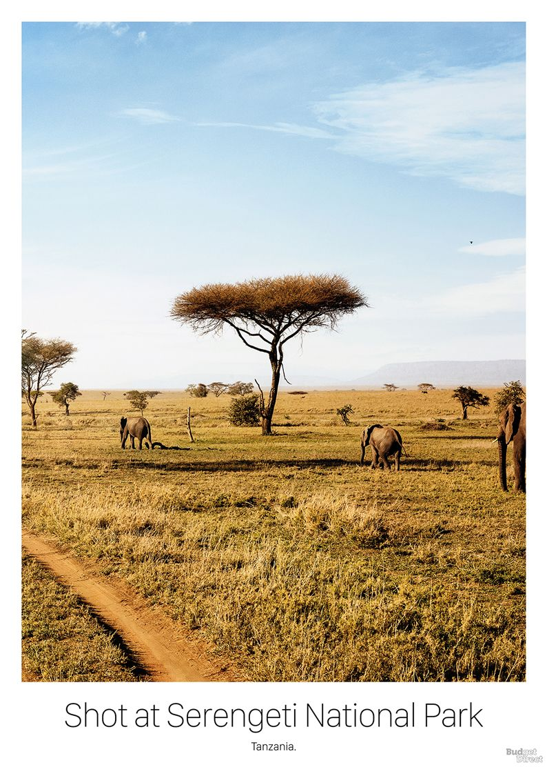 16_travel-poster-tanzania-safari